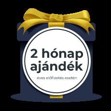 2 hónap ajándék ikon